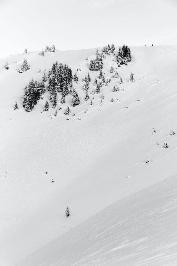 Gianluca Barnaba - Il candore dello scialpinismo (Cima bella, Ugovizza)